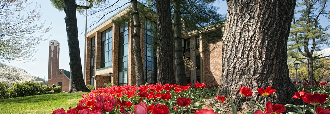 Administration Building with tulips